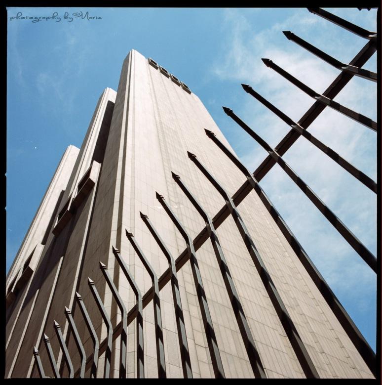 Hasselblad 503CX Kodak Portra 400