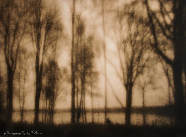 Zero Image 612F Fuji Acros 100 handheld exposure for about 30 sec Kodak Tmax developer 1:4 Fomatone MGFB131 Lith dev LD20