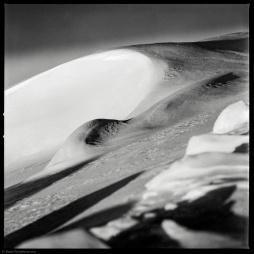 Hasselblad 500CM + Sonnar 150/4 Ilford PanF+ Ilfotec DD-X 1:4