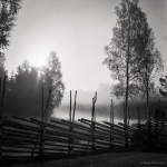 our-traditional-old-swedish-fence-21