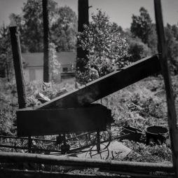 Hasselblad 503cx Ilford FP4+ Kodak HC110B