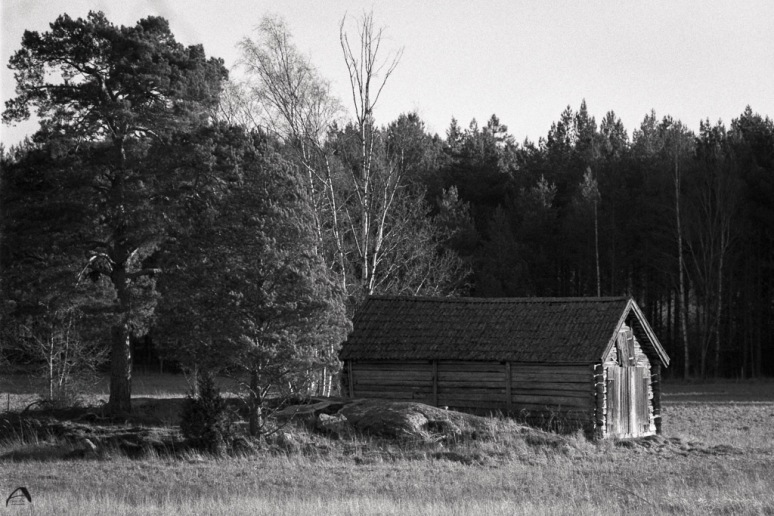 Olympus OM1n Zuiko for OM 85/2 JCH Street pan 400 Kodak HC 110B for 5 minutes Scanned with Braun FS120